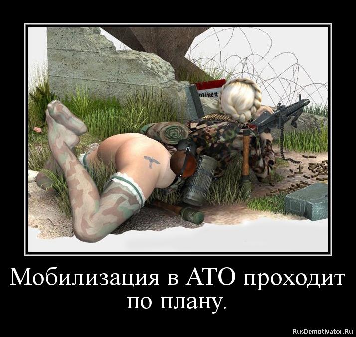 Новости дня в сочи россия